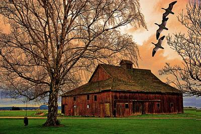 Photograph - Old Barn With Geese by Craig Perry-Ollila