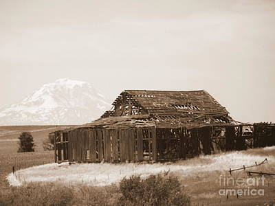 Photograph - Old Barn With Mount Hood In Sepia by Carol Groenen