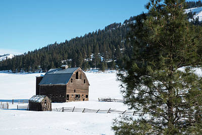 Photograph - Old Barn With Unmarked Snow by Tom Cochran