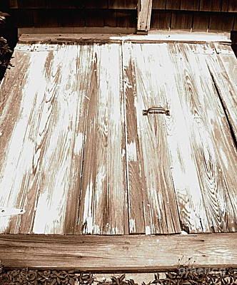 Old Basement Doors Art Print by Colleen Kammerer