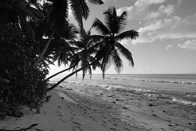 Photograph - Old Beach by Michael Scott