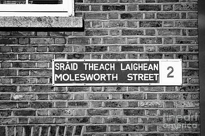 Bilingual Street Signs Photograph - old blue and white bilingual street sign for molesworth street on red brick wall Dublin Republic of  by Joe Fox