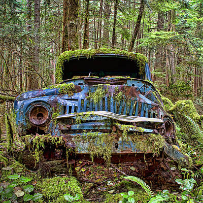 Rusty Cars Photograph - Old Blue Truck In Forest by Peggy Collins