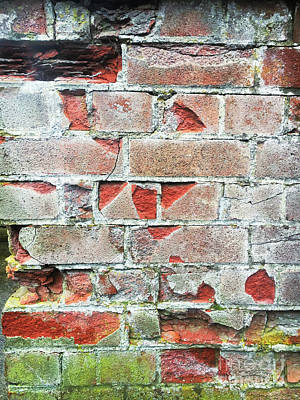 Messy Photograph - Old Brick Wall by Tom Gowanlock