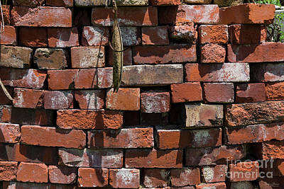 Photograph - Old Bricks Abstract by Jennifer White