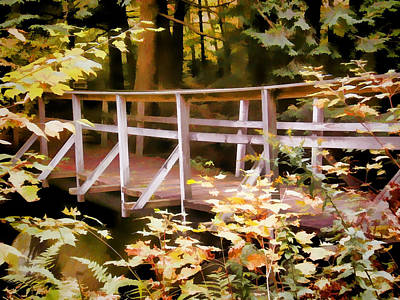 Old Bridge In The Woods In Color Art Print by Rena Trepanier