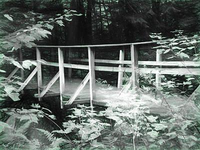 Old Bridge In The Woods Art Print by Rena Trepanier
