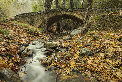 Photograph - Old Bridge by Mike Santis