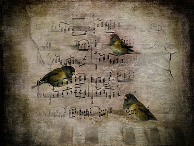 Old Sheet Music Photograph - Old But Not Forgotten by Diane Schuster