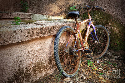 Decrepit Photograph - Old Bycicle by Carlos Caetano