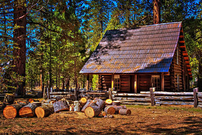 Photograph - Old Cabin In The Woods by Susan Rissi Tregoning