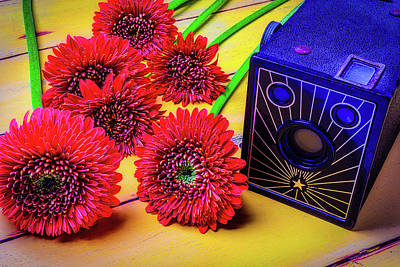 Old Camera And Dasies Art Print by Garry Gay