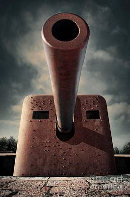 Photograph - Old Cannon by Carlos Caetano
