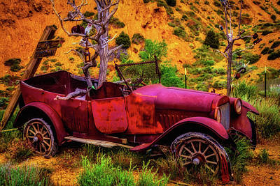Forgotten Cars Photograph - Old Car Rusting Away by Garry Gay