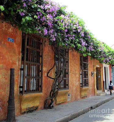 Photograph - Old Cartagena 27 by Randall Weidner