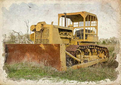 Photograph - Old Cat Watercolor IIi by Ricky Barnard