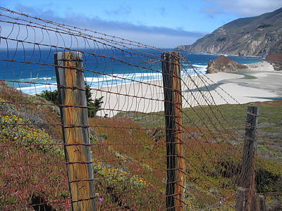 Art Print featuring the photograph Old Cattle Ranch In Big Sur by Don Struke