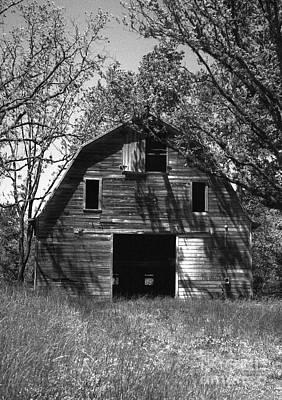 Old Cedar Barn Art Print