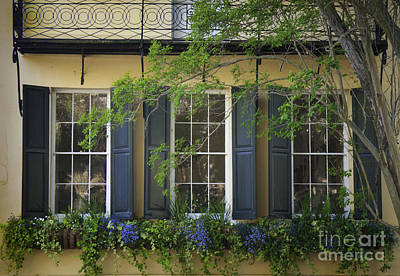 Old Charleston Window  Art Print