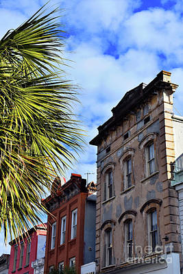 Photograph - Old Charleston,sc by Skip Willits