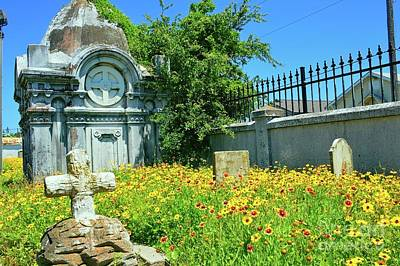 Photograph - Old City Cemetery by Diana Mary Sharpton