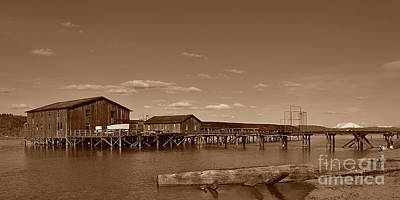 Photograph - Old Columbia River Fish Buying Station by Ansel Price