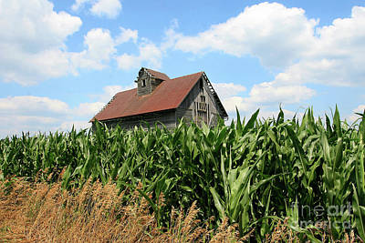Photograph - Old Corn Crib by Paula Guttilla