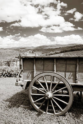 Antiques Photograph - Old Country Wagon by Marilyn Hunt