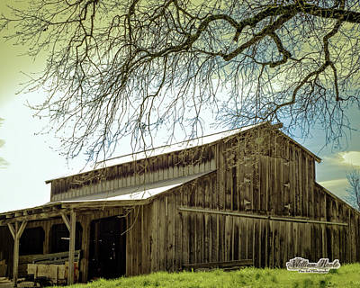 Photograph - Old County Barn by William Havle