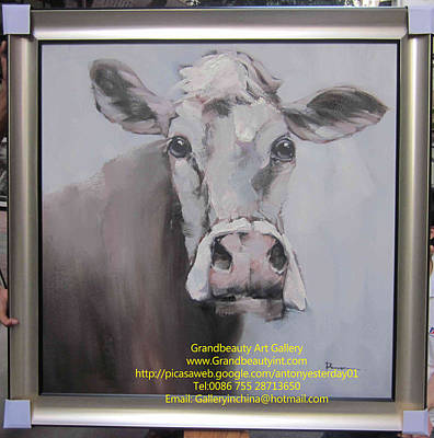 Old Cow Art Print by Darren