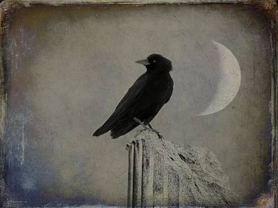 Old Crescent Moon And Crow Art Print by Gothicrow Images