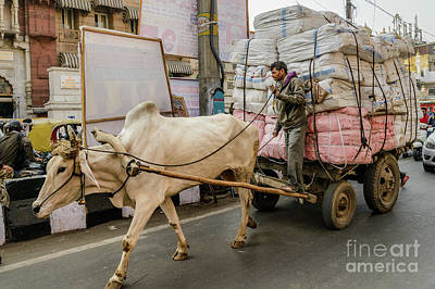Photograph - Old Delhi From A Rickshaw 07 by Werner Padarin
