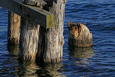Photograph - Old Dock Parts 2 by Mary Bedy