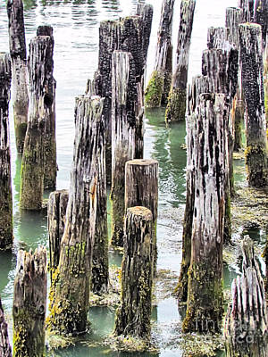Fore River Photograph - Old Dock Remains by Elizabeth Dow