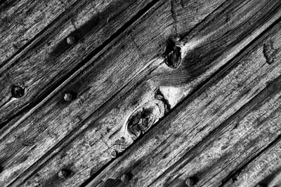 Photograph - Old Door Wood 2 Bw by Mary Bedy