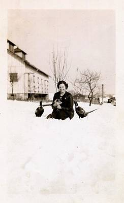 Winter Photograph - Old English Blacknecks by JAMART Photography