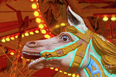 Photograph - Old Fairground Horse by Terri Waters