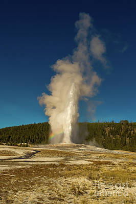 Photograph - Old Faithful by Jon Burch Photography