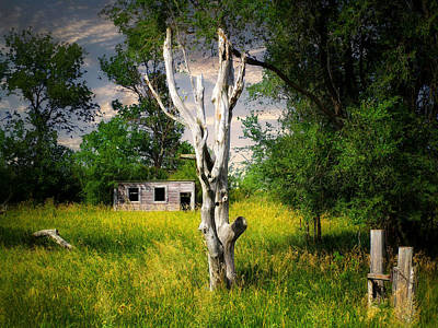 Photograph - Old Farm 9 by William Tanata