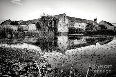Old Farm And Pond In France Art Print