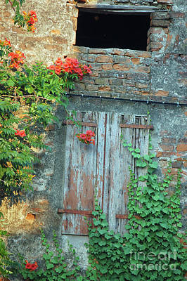 Photograph - Old Farm Door by Frank Stallone