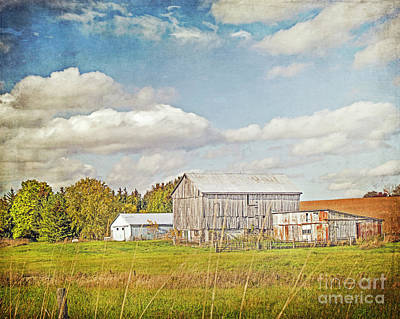 Photograph - Old Farm In Autumn by Hal Halli