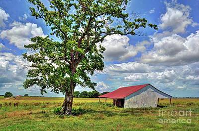 Photograph - Old Farm In Richmond  by Savannah Gibbs