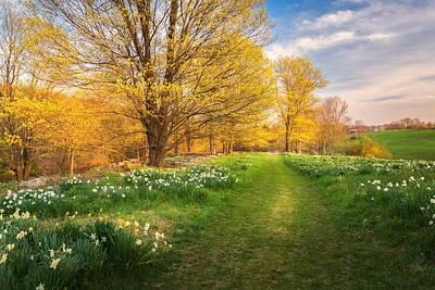 Laurel Ridge Farm Photograph - Old Farm Trail by Kim Carpentier