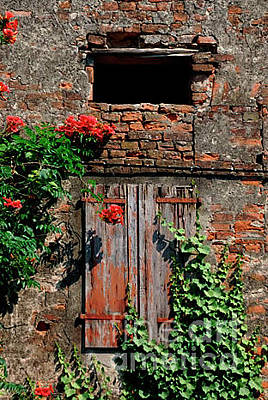 Photograph - Old Farm Window by Frank Stallone
