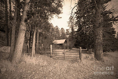 Photograph - Old Farmhouse by Steve Triplett
