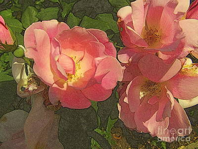 Photograph - Old-fashioned Rose Delight by Miriam Danar