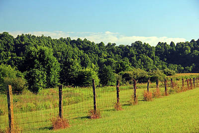 Photograph - Old Fence by Angela Murdock