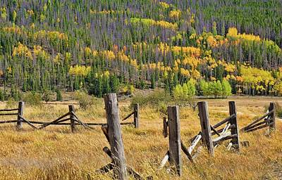 Photograph - Old Fence In Autumn by Dan Sproul