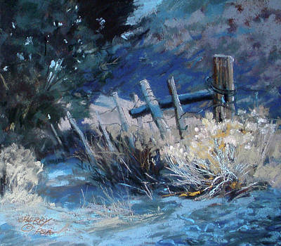 Old Fence Art Print by Mary Ann Cherry